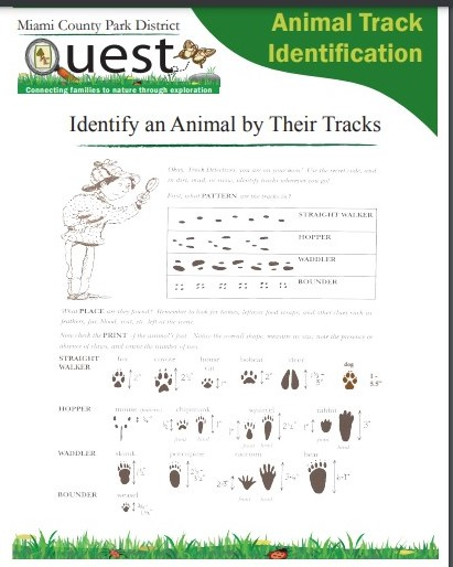 Animal Track ID Guide