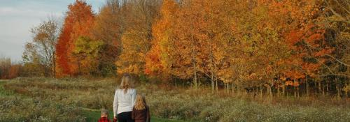 woman and two children walking on a path in the fall